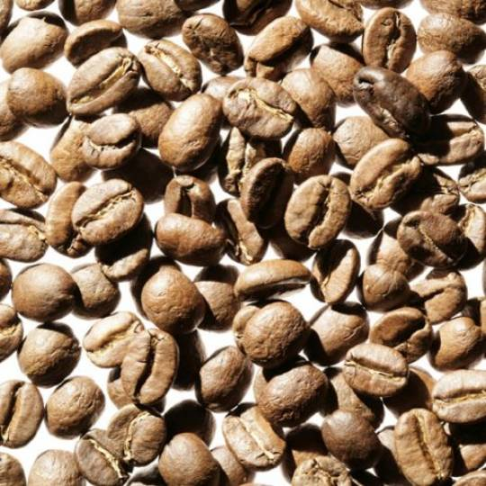 Peru Chanchamayo Økologisk kaffe 250g