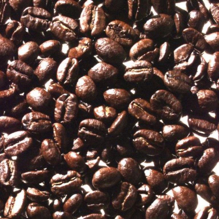 Colombia Palmitas
