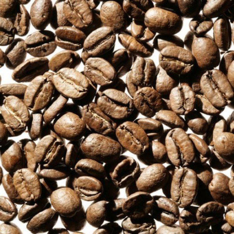 Kenya AA Kegwa Estate 250g