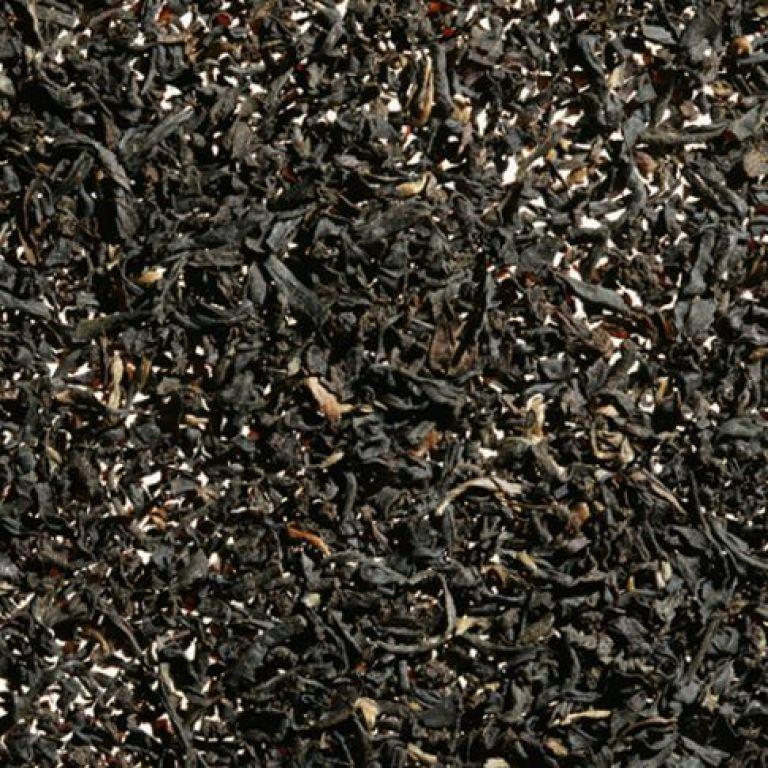 X-Oriental Spice
